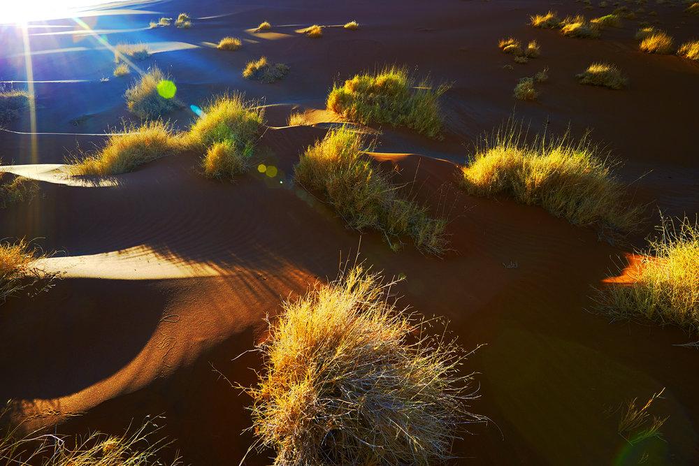 140621_PNC_Namibia_1766.jpg