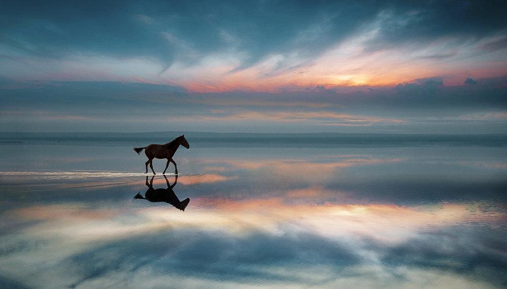 salt lake (3).jpg