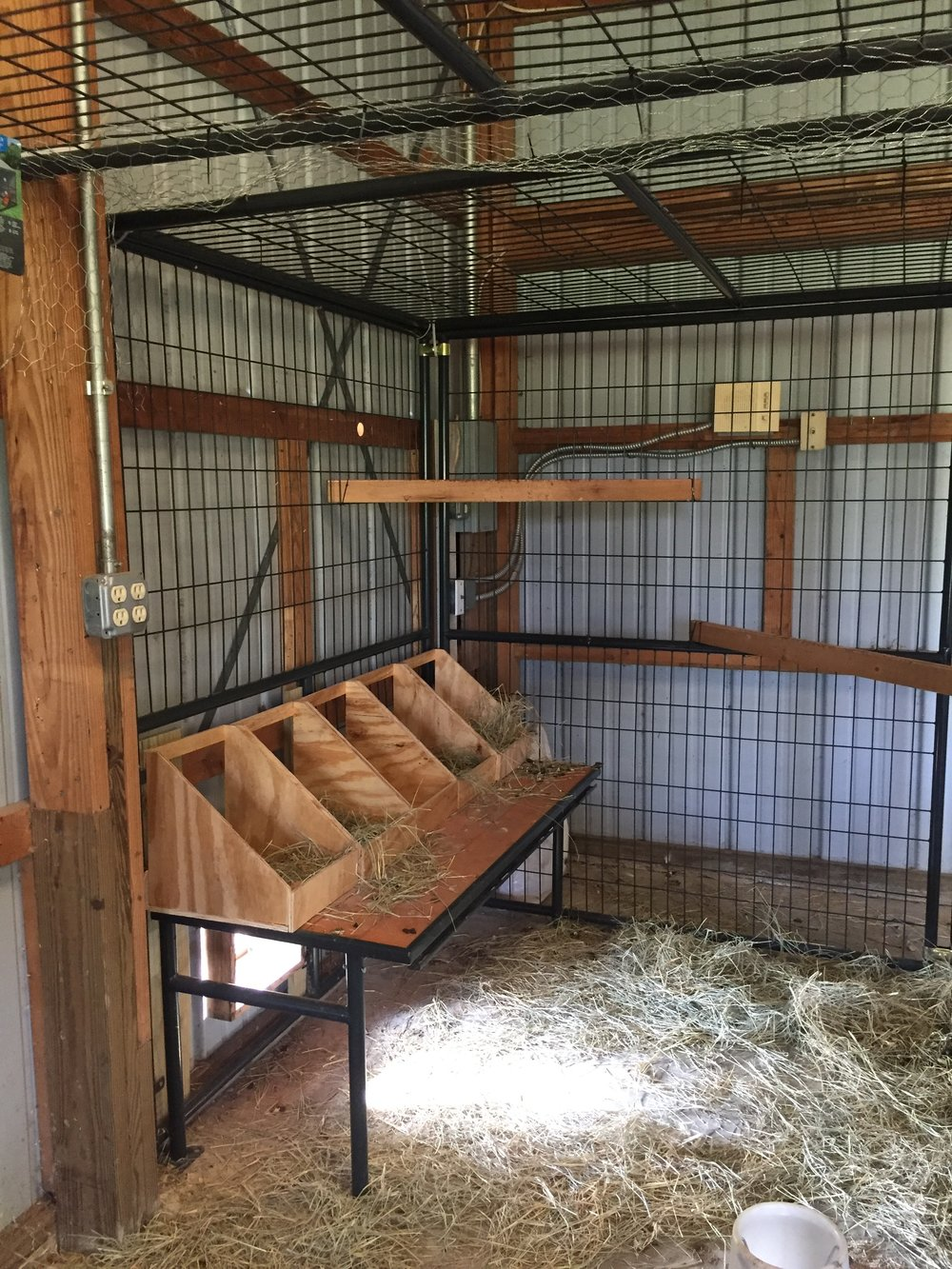Chickens new nesting boxes.