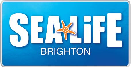 SEA LIFE BRIGHTON BEACH CLEAN UP EVENT