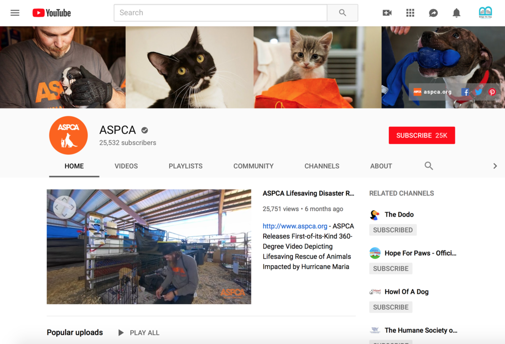 A nonprofit marketing strategy should include youtube to bring your cause to life.