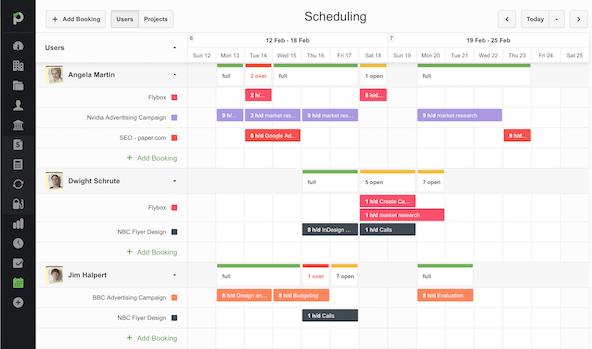 Website development Project Management Software Paymo