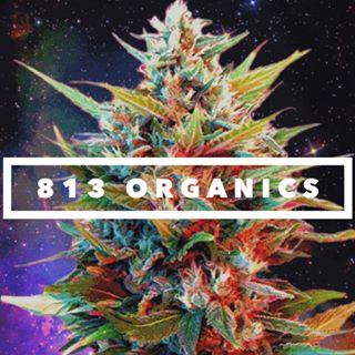 813 Organics.jpg