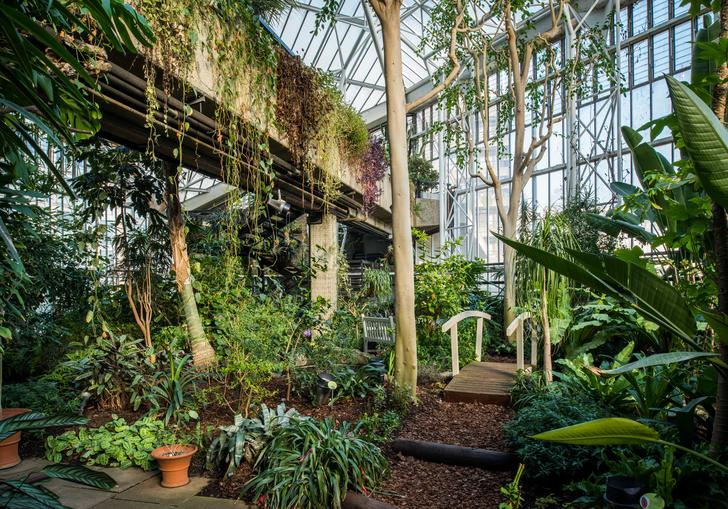Conservatory, Barbican Centre, CREDIT Max Colson.jpg
