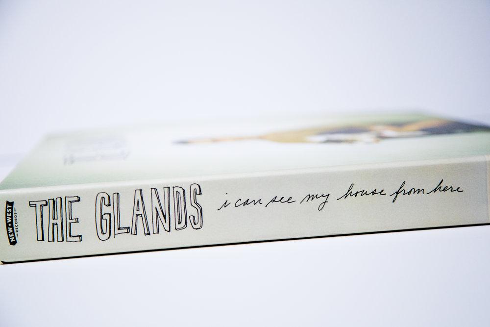 Gland_ Box_0007.jpg