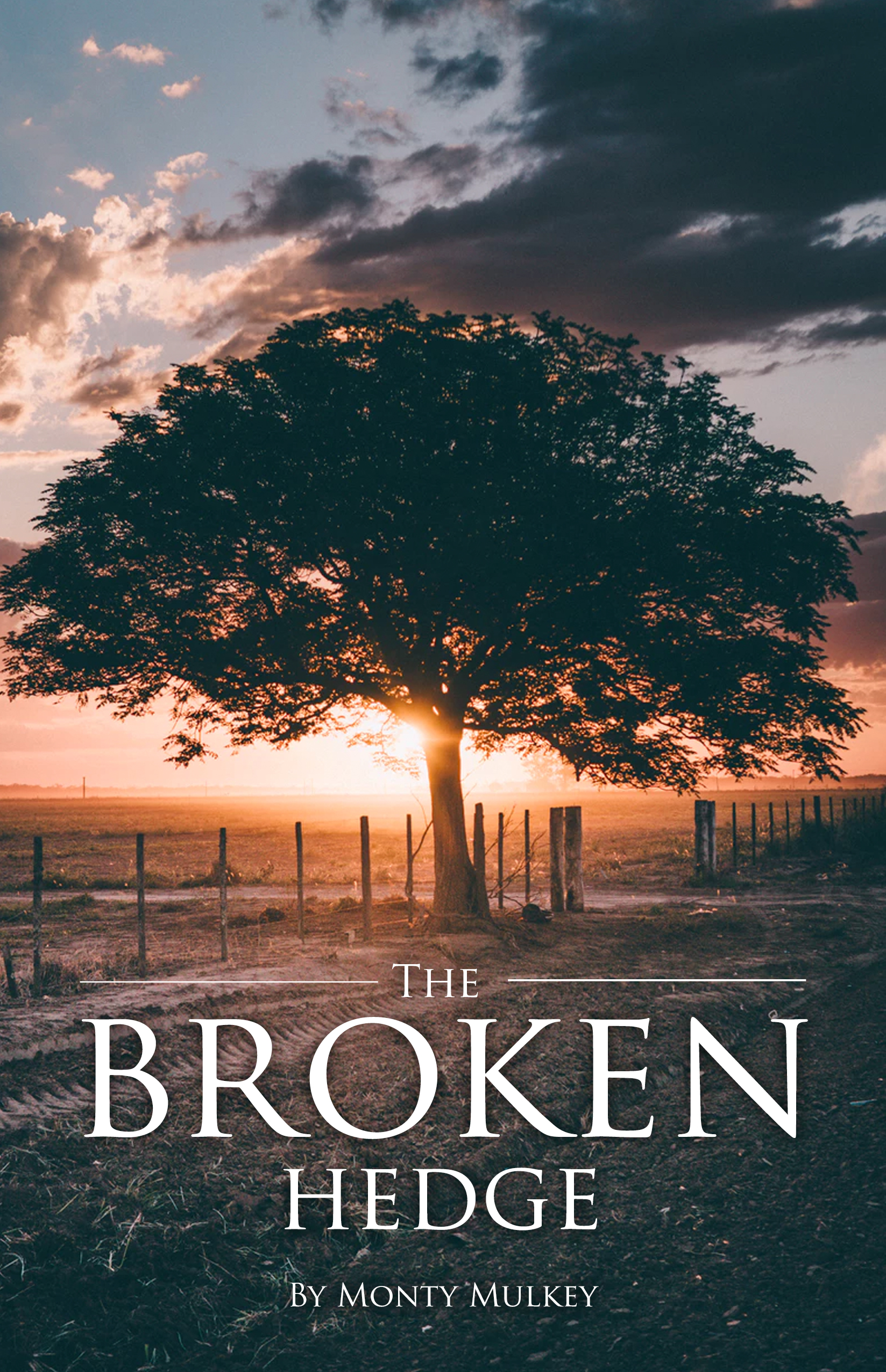 The Broken Hedge — Moms of Miracles