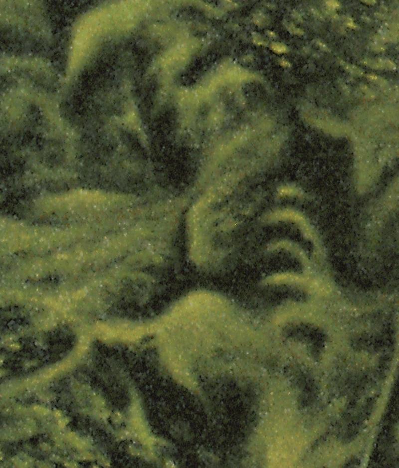 FIRST PROBE - Detail 4.jpg