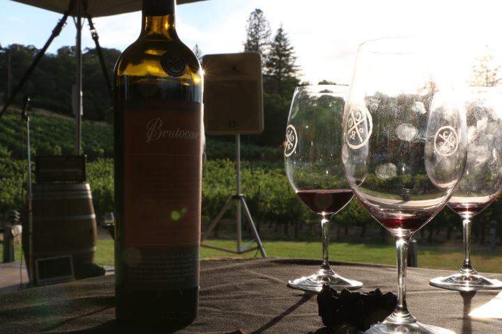 Coro Production Protocols - Coro wines must pass a review by a panel of winemakers in four blind tastings before the wine is accepted and certified to carry the Coro Mendocino label.