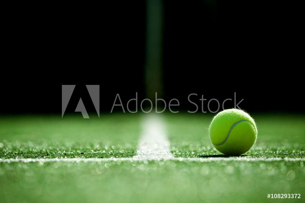 AdobeStock_108293372_Preview.jpeg