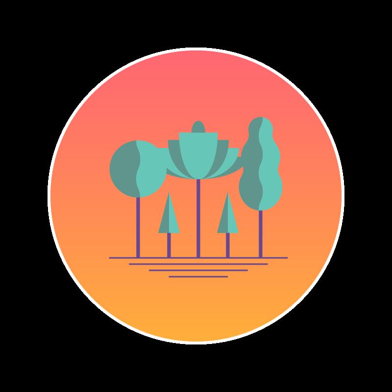 As florestas servem como estocadoras e sequestradoras de carbono.