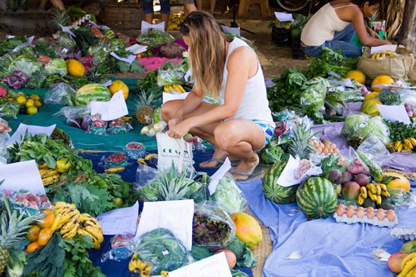 FarmersMarket_1109.jpg