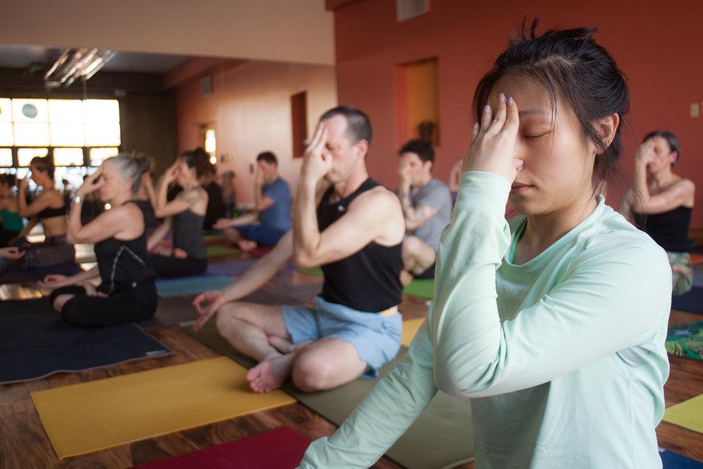 Yoga for Life  Portland 030.jpg