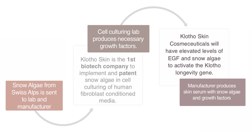 KlothoSkinProduction.jpg