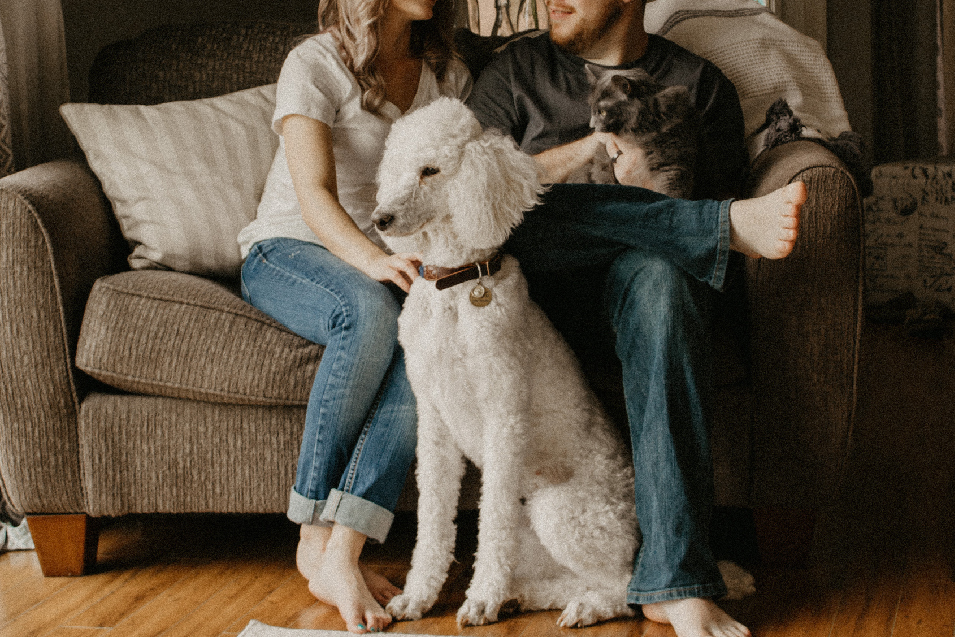 WA pet cremation, pet crematory, pet urns, pet death, veterinarians, vets, pet health, washington state pets, quincy wa pets,