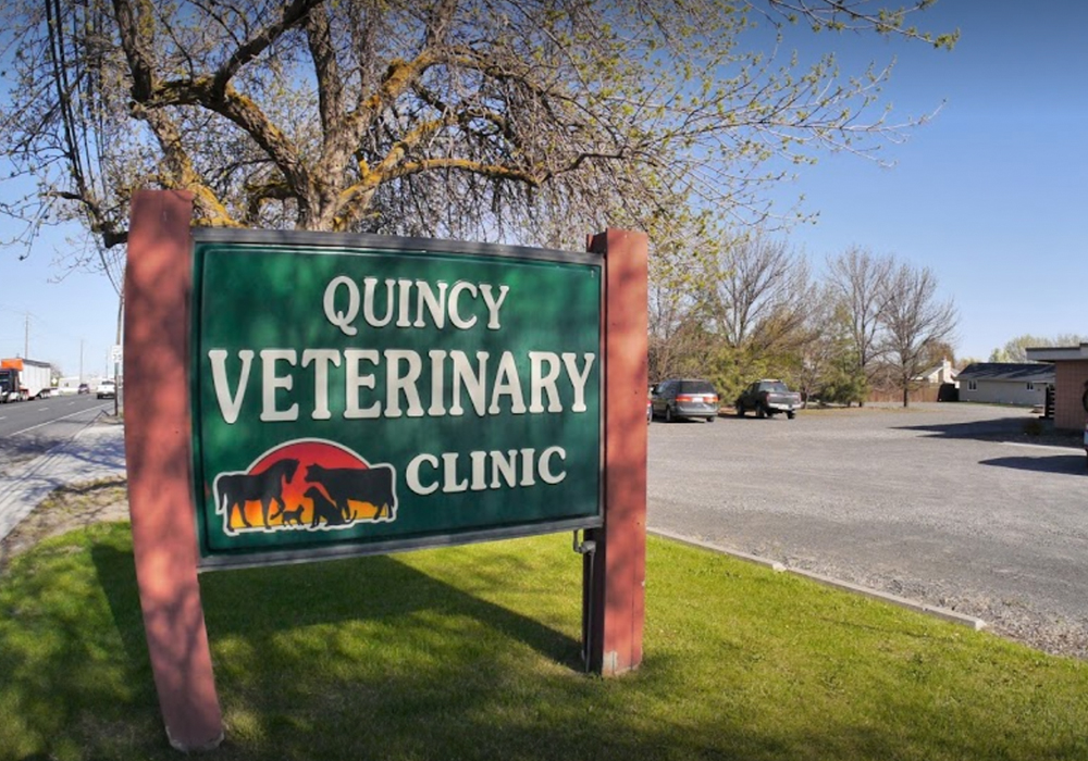 Quincy Veterinary Clinic - 616 F St SWQuincy, WA 98848(509) 787-2611www.quincyveterinaryclinic.com