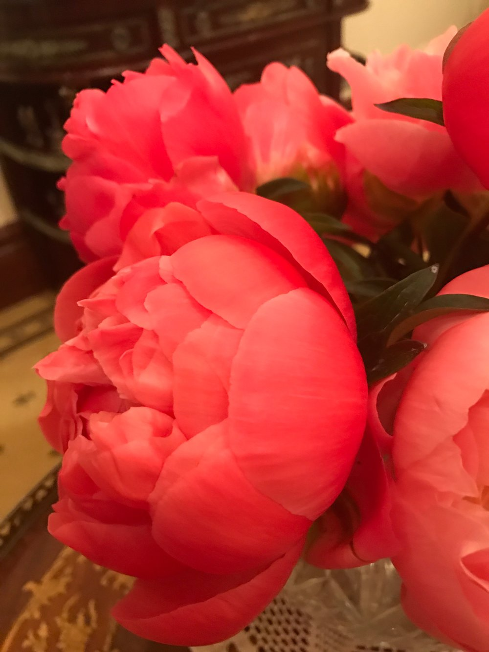 SHOP - Buy All Things Peony