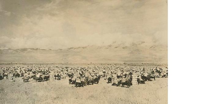 A tea caravan from Sichuan, 1926 (Image:asiawheeling.com)