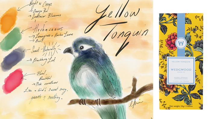 Bernadine's inspiration and sketch for Wedgwood's Wonderlust collection – Yellow Tonquin blend.