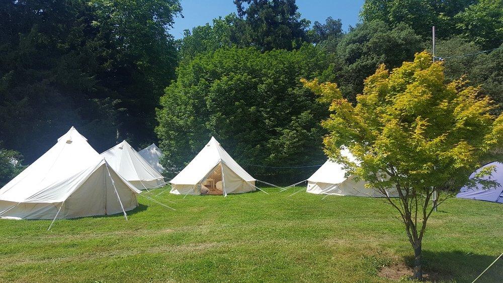 campsite bells tree.jpg
