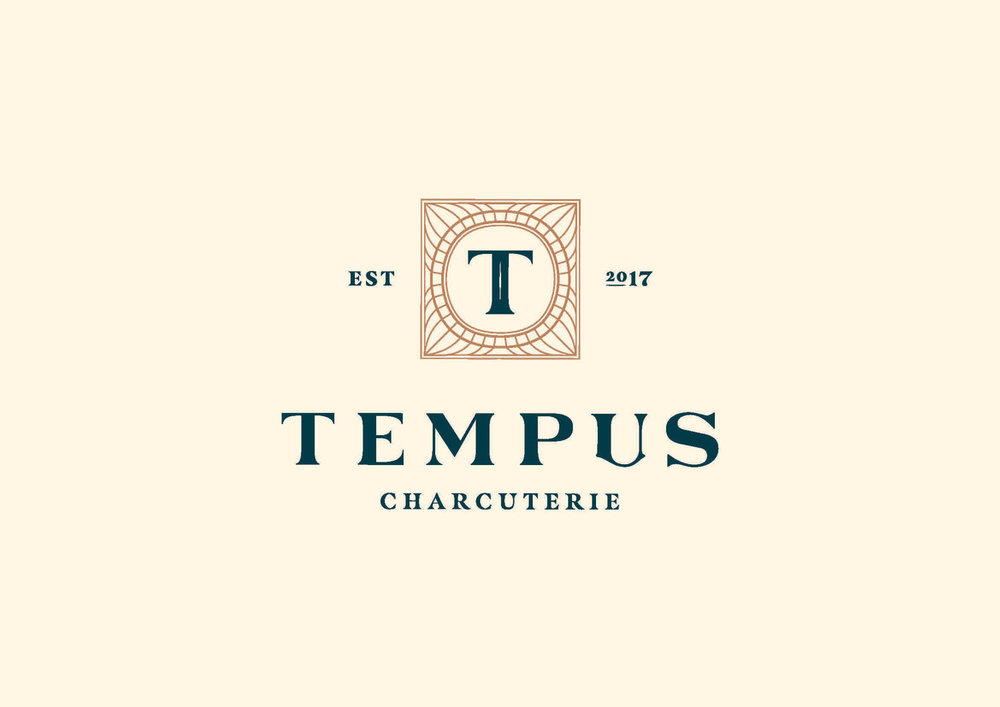 Tempus_Primary-Logo_Colour-CMYK-optimised.jpg