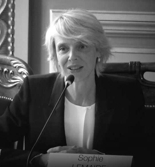 DROIT DES CONTRATS INTERNATIONAUX & ARBITRAGE D'INVESTISSEMENT - Sophie LEMAIRE - Co-directrice, Co-directrice du Centre de Recherche Droit Dauphine (CR2D), Membre du bureau du Comité Français de l'arbitrage, Directrice de la chronique de « Jurisprudence arbitrale en droit des investissements » de la Revue de l'arbitrage.