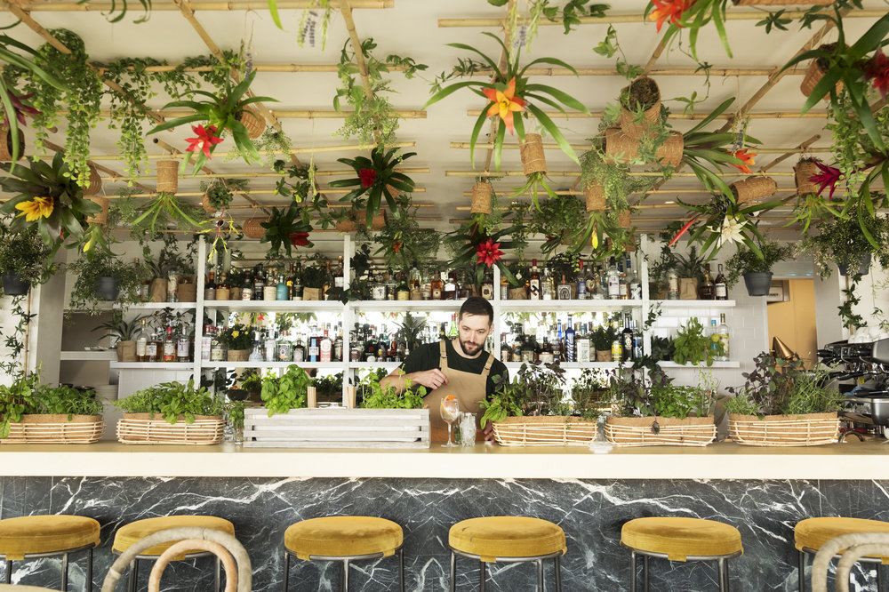 living bar - A sensory cocktail journey now featured at Garden Room.BOOK NOW