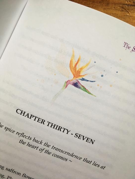 The Saffron Collectors Chapter 37.jpg