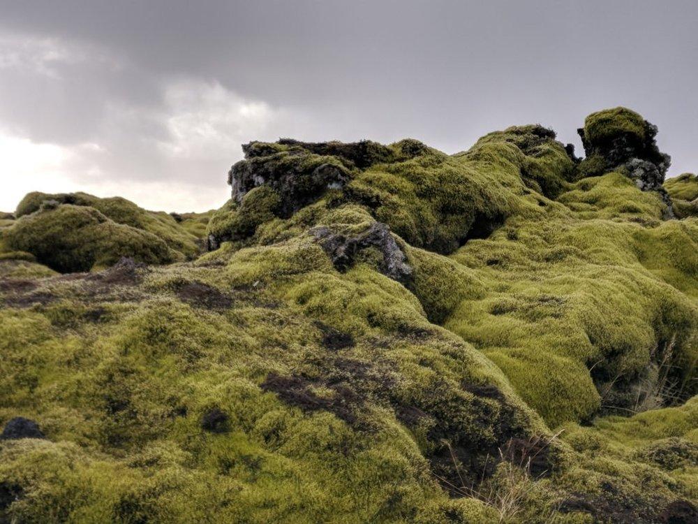 Iceland Photography - Skaftárhreppur III.jpg