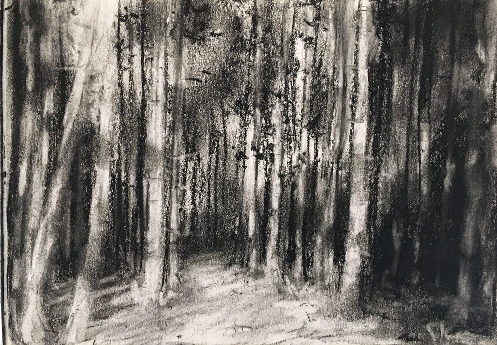 901 Charcoal Sketches I.jpg