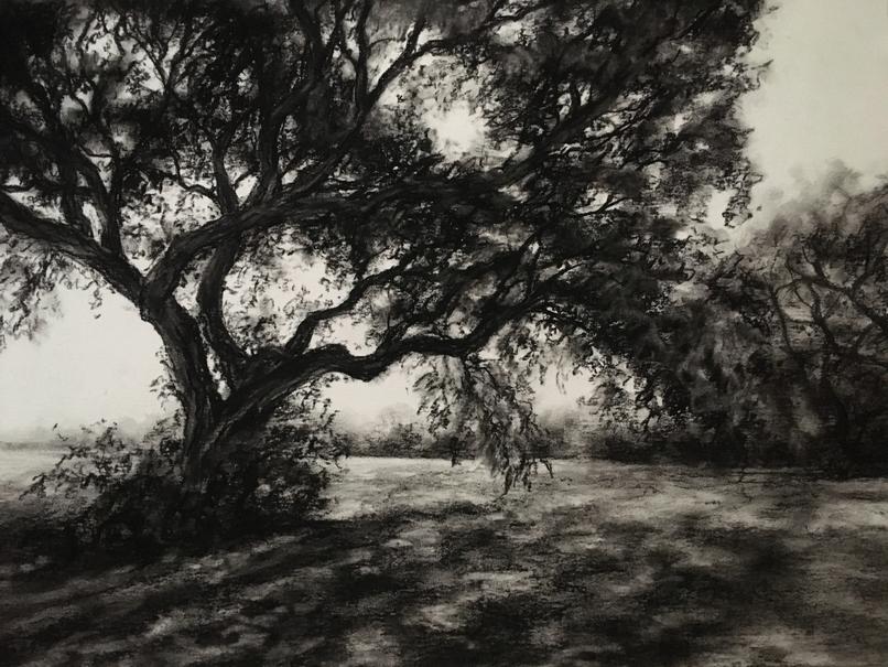 910 Charcoal Sketches X.jpg