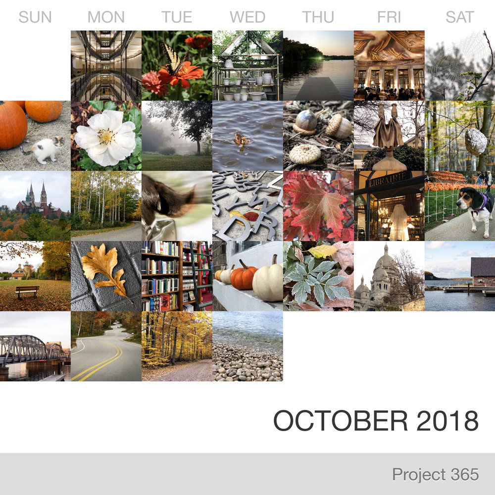 Project 365 _October-2018_Collage.jpg