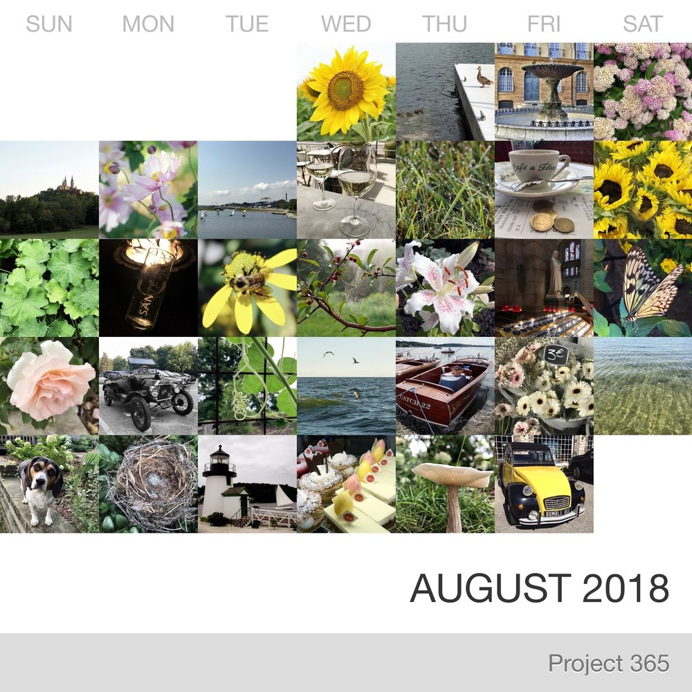 Project 365 _August-2018_Collage 2.jpg