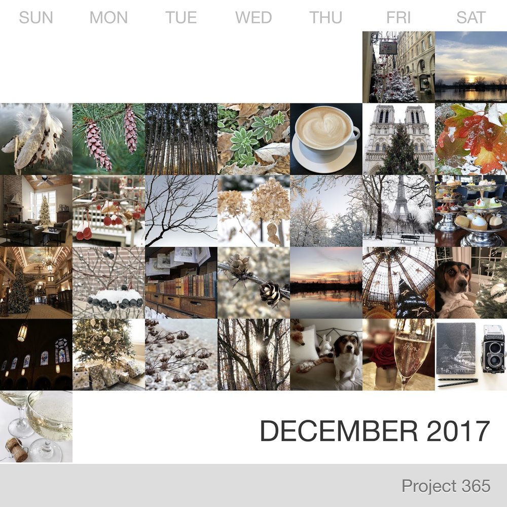 Project 365 _December-2017_Collage.jpg