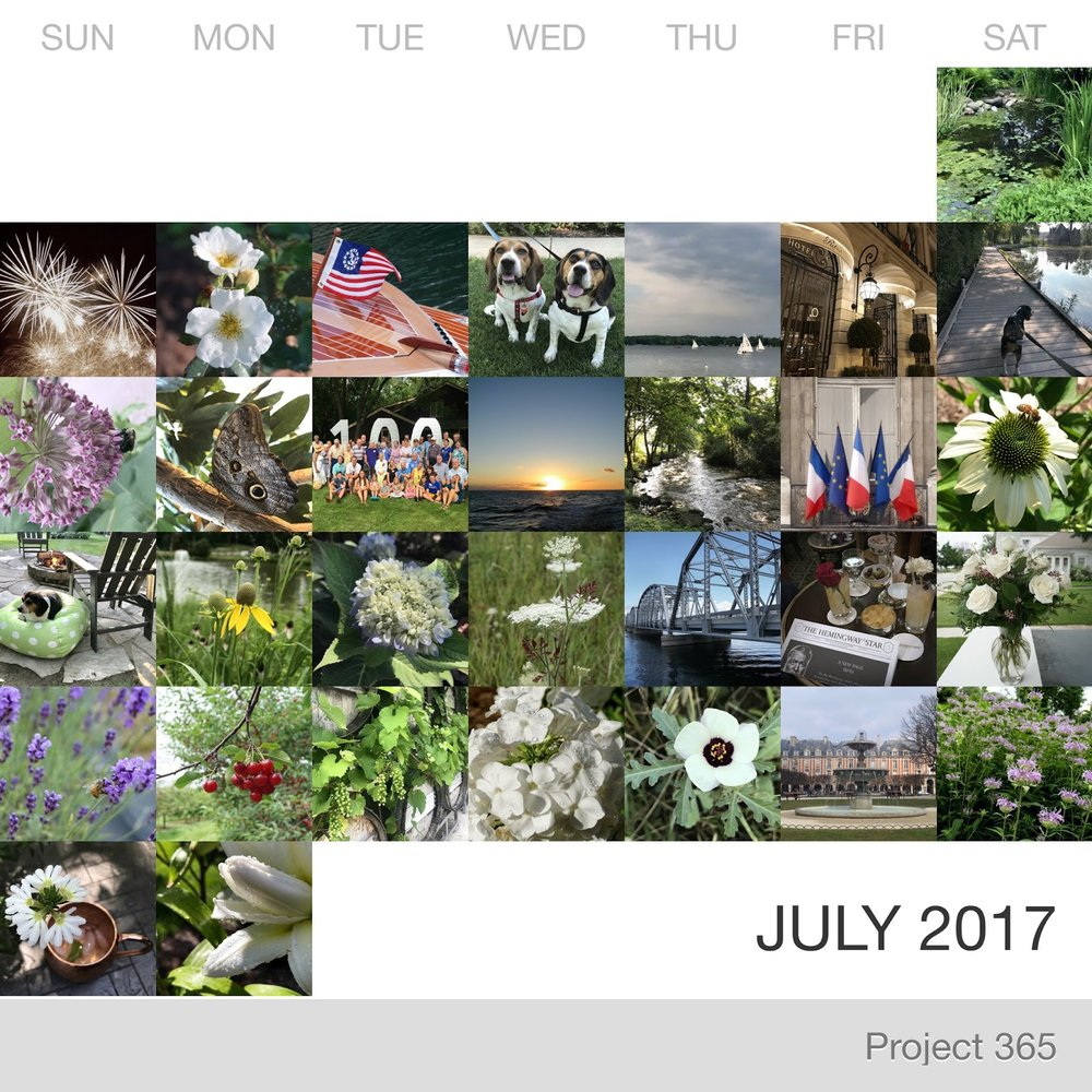 Project 365 _July-2017_Collage.jpg