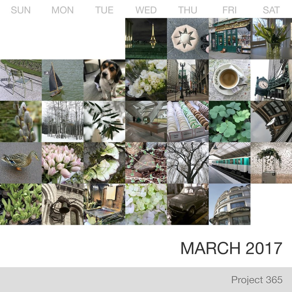 Project 365 _March-2017_Collage 2.jpg