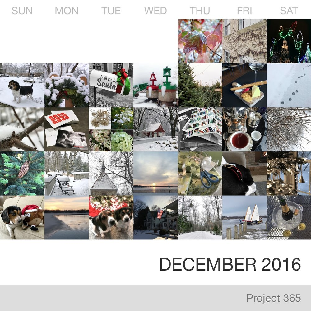 Project 365 _December-2016_Collage.jpg