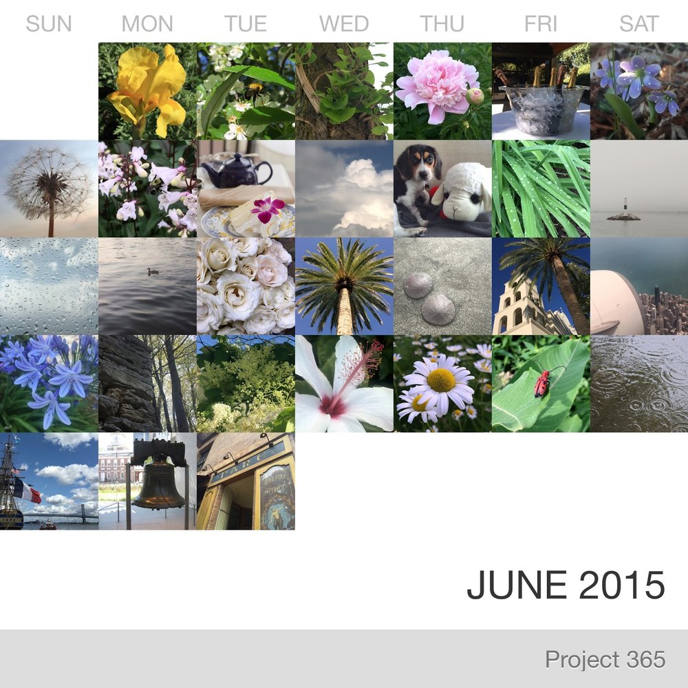 Project 365 _June-2015_Collage 2.jpg