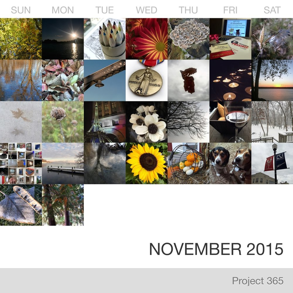 Project 365 _November-2015_Collage.jpg