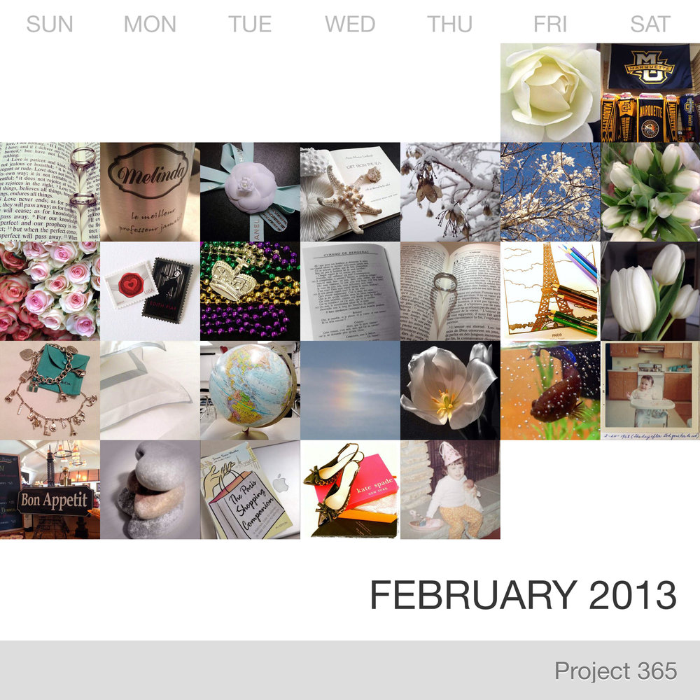 Project 365 _February-2013_Collage.jpg