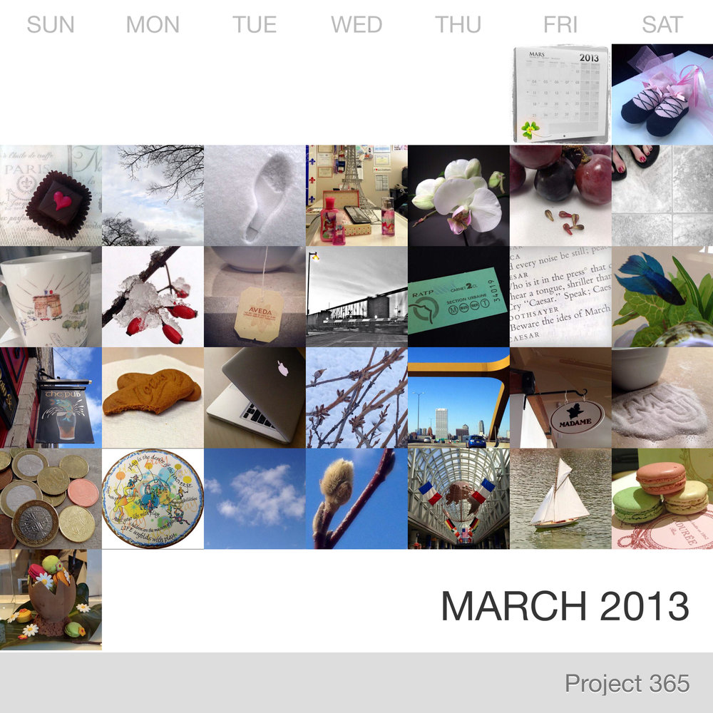 Project 365 _March-2013_Collage.jpg