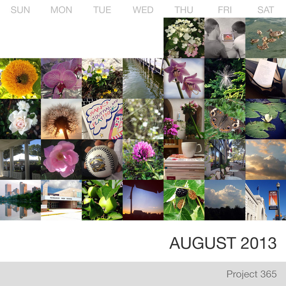 Project 365 _August-2013_Collage.jpg
