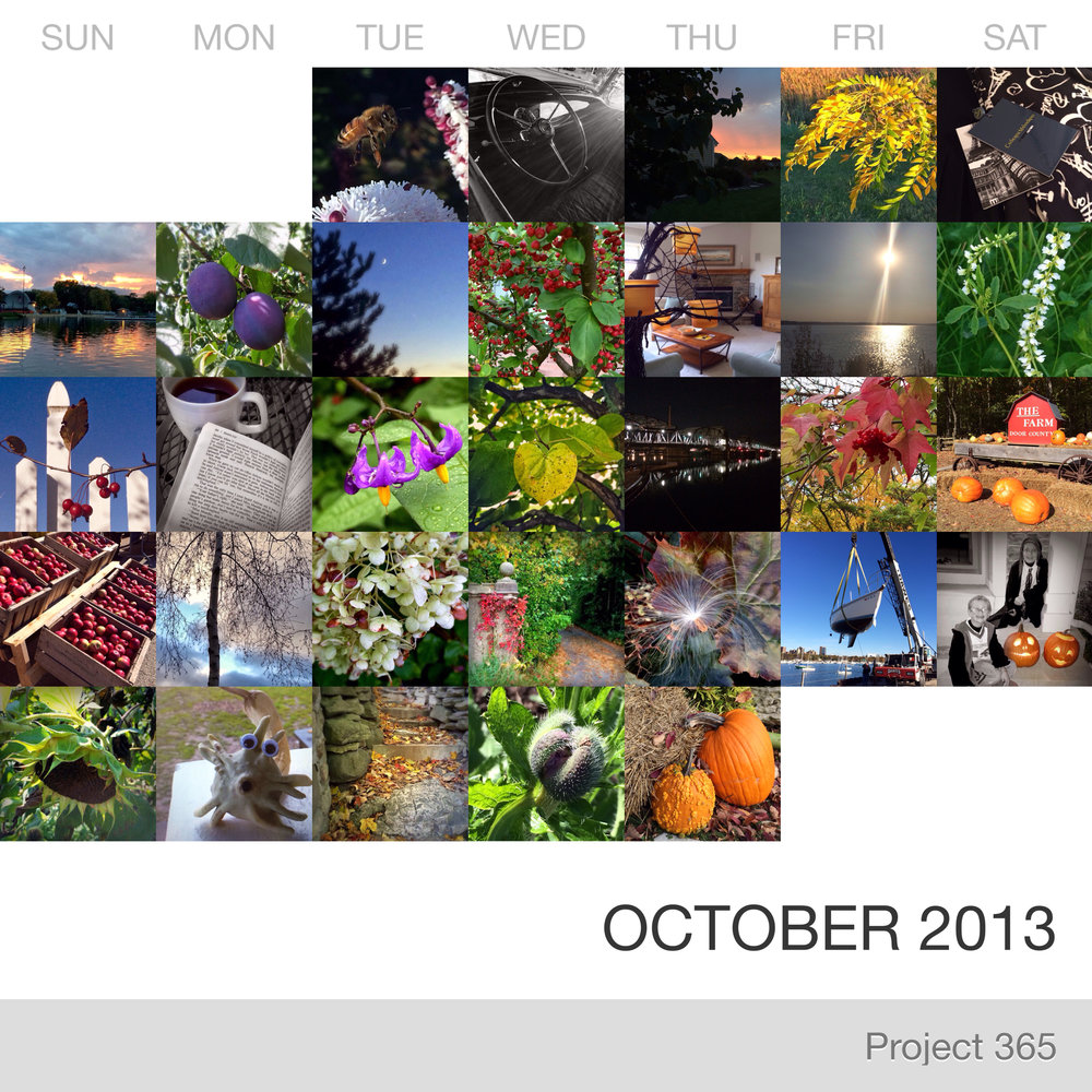 Project 365 _October-2013_Collage.jpg