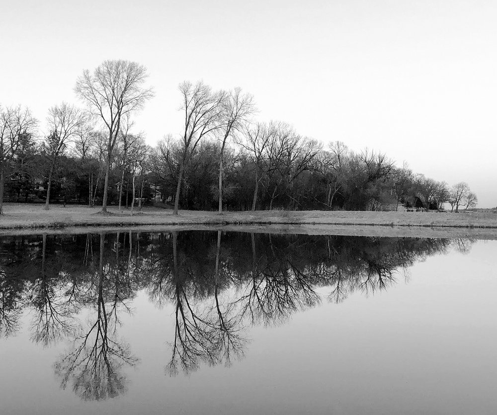 Reflection - black and white
