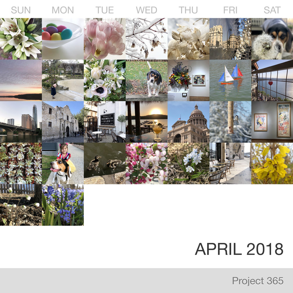 Project 365 _April-2018_Collage.jpg