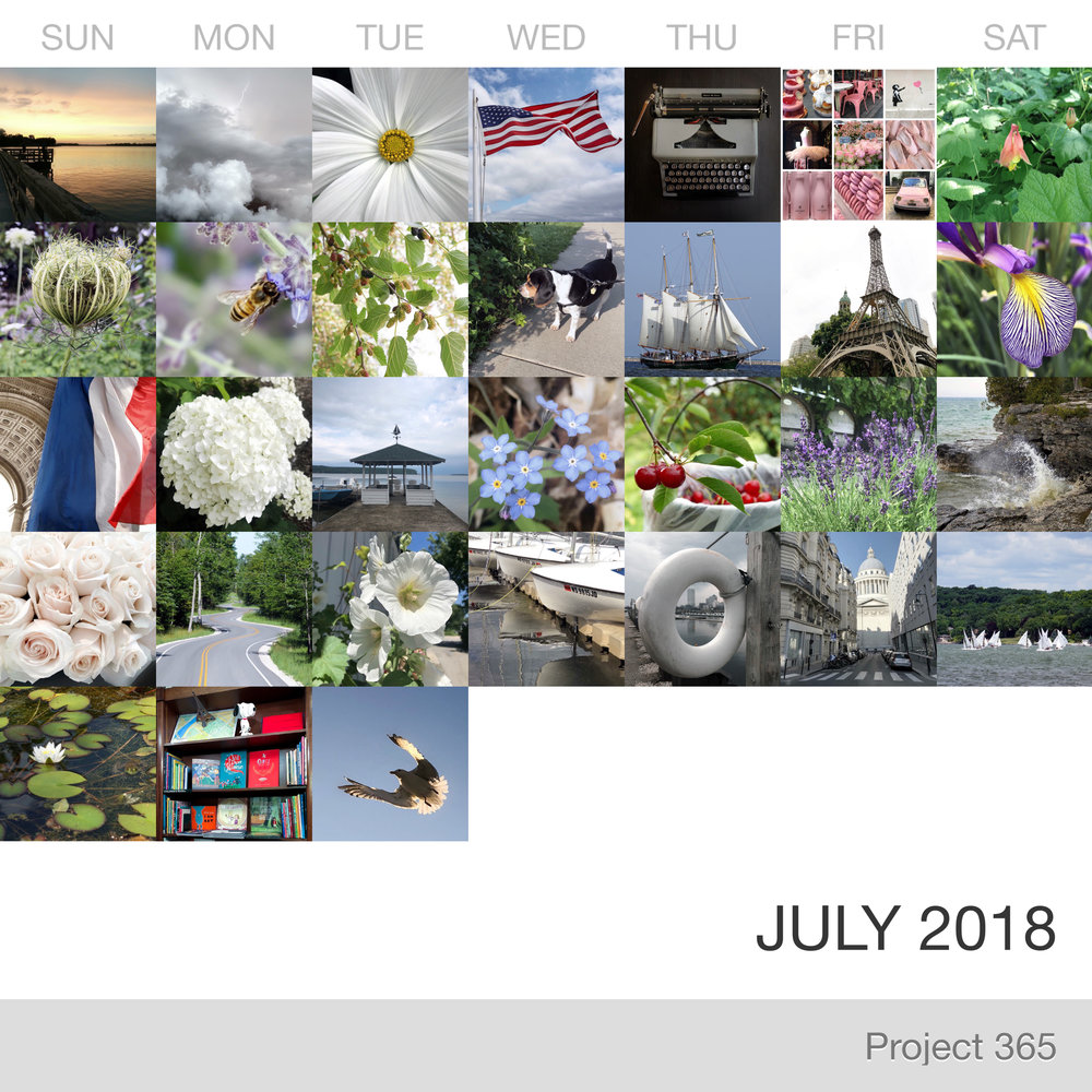 Project 365 _July-2018_Collage.jpg