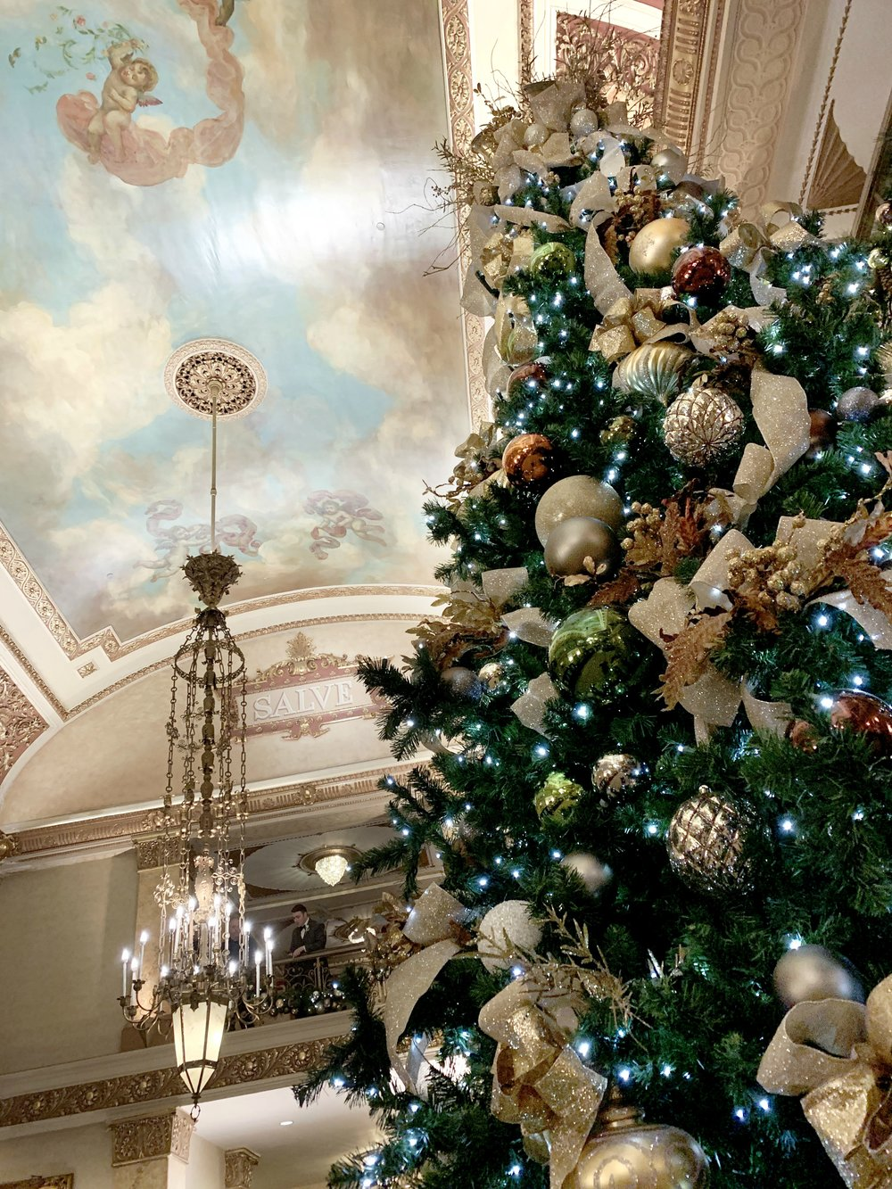Pfister tree + ceiling