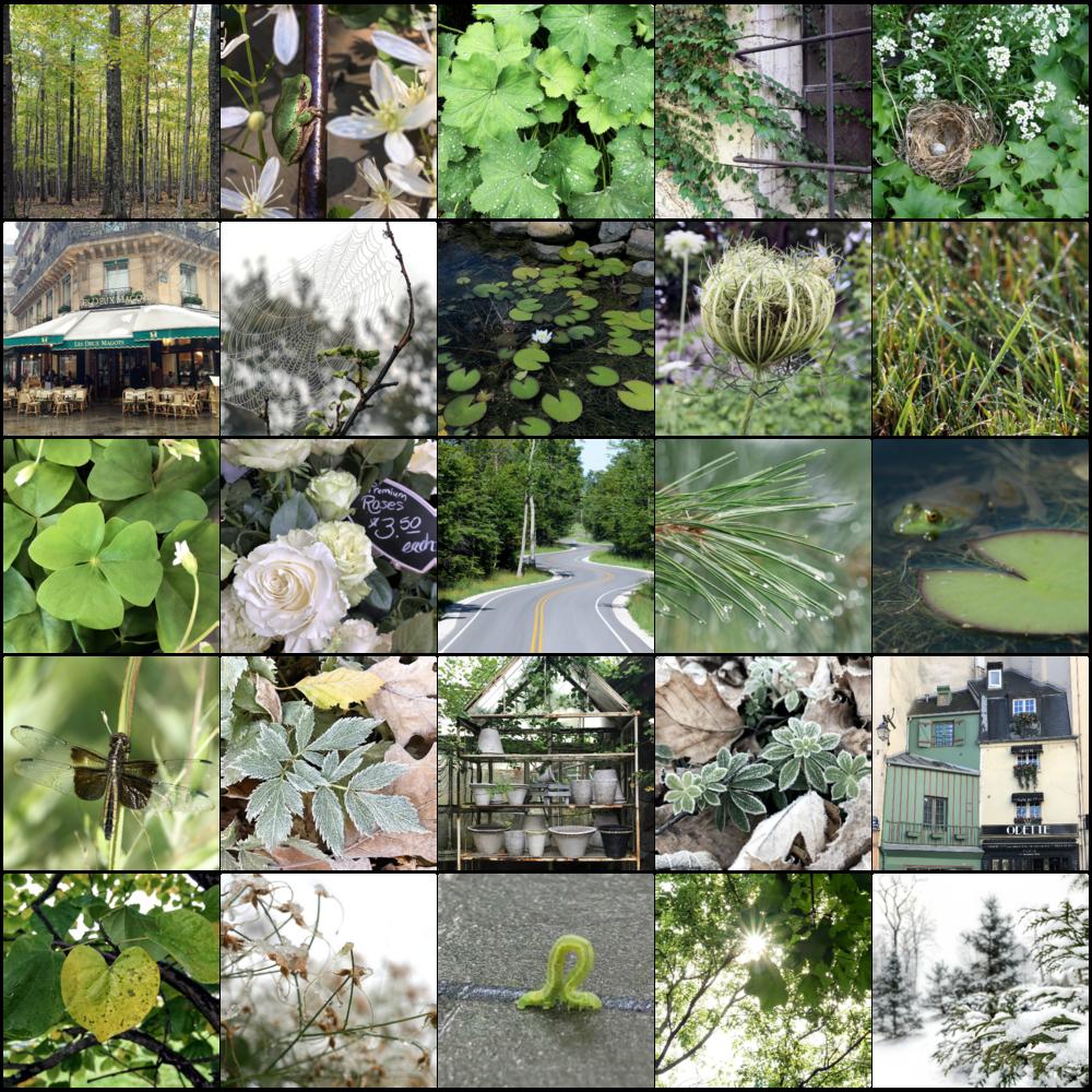 la vie en vert | green