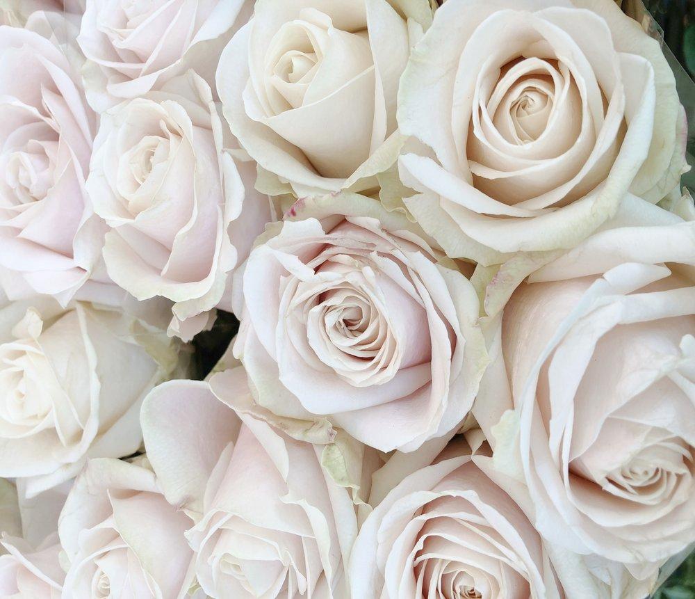 fleurs de février