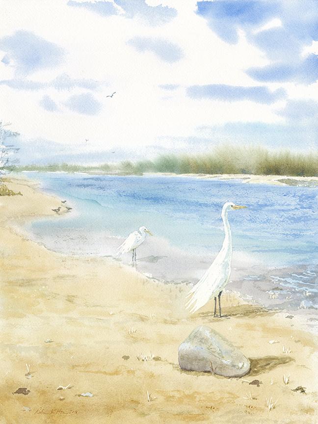 Sunken meadow inlet:Crane.jpg