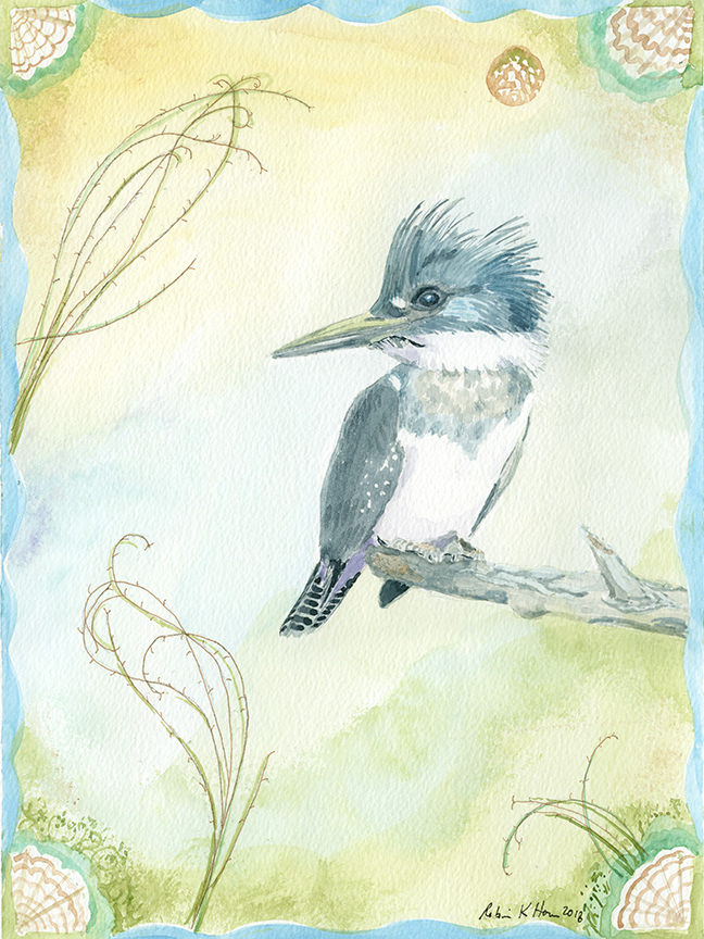 Untitled 2 kingfisher.jpg